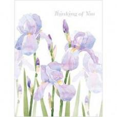 B035 Thinking of You Irises Gift Card