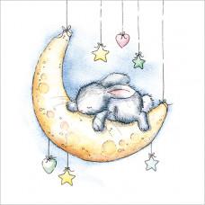 FP5025 Moon Bunny