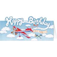 DC65 A Birthday Plane