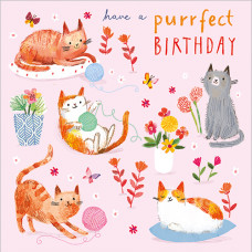 FP5161 Have a Purrfect Birthday