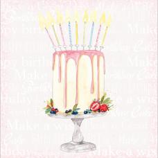 FP6231 Make a Birthday Wish (Cake)