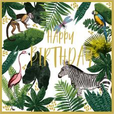 FP6233 Wild (Happy Birthday)