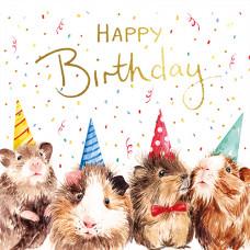 FP6252 Guinea Pigs (Happy Birthday)
