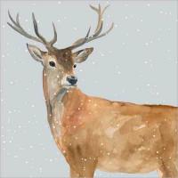 XC087 Deer in the Snow (Pk 8)
