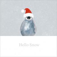 XC109s Hello Snow (Single)