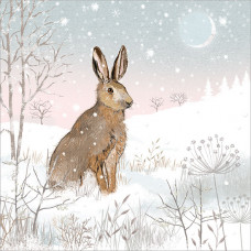 XC112 Hare in the Snow (Pk 8)