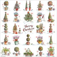 XAC13 Festive Pots Advent Card