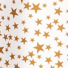 TS09 Gold Stars on White Tissue Paper (3 sheets)