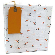 TS13 Frosty Tissue Paper (5 sheets)