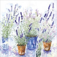 FP6027 Lavender Pots