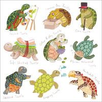 FP6193 Turtles
