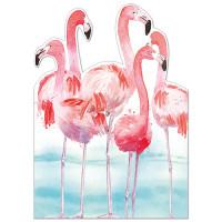 FP7072 Flamingos