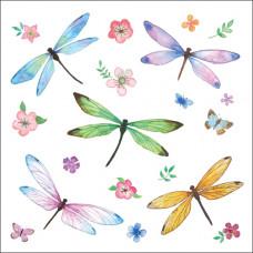 LS07 Dragonflies