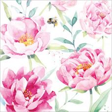 FP5058 Pink Peonies