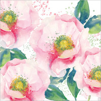FP5166 Pink Roses