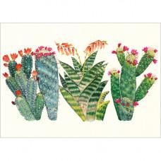 FP7044 Cacti