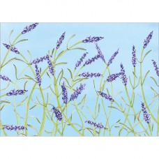 FP7045 Lavender