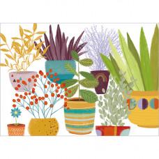 FP7046 Plants in Pots