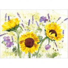 FP7076 Sunflowers