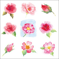 WS144 Rose Collage