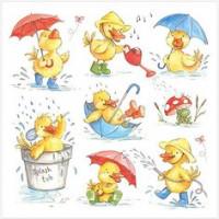 LS104 Ducks