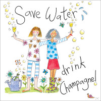 S227 Save Water