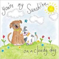 S243 You're my Sunshine