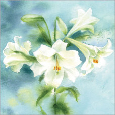 WS134 White Lily Bouquet