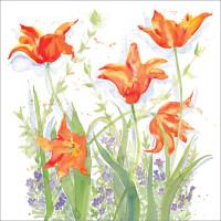 WS261 Tulips in the Garden
