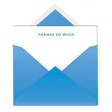 NC011 Thanks So Much Notecard & Envelope (Single)