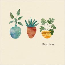 FP5132 Three Pot Plants (New Home)